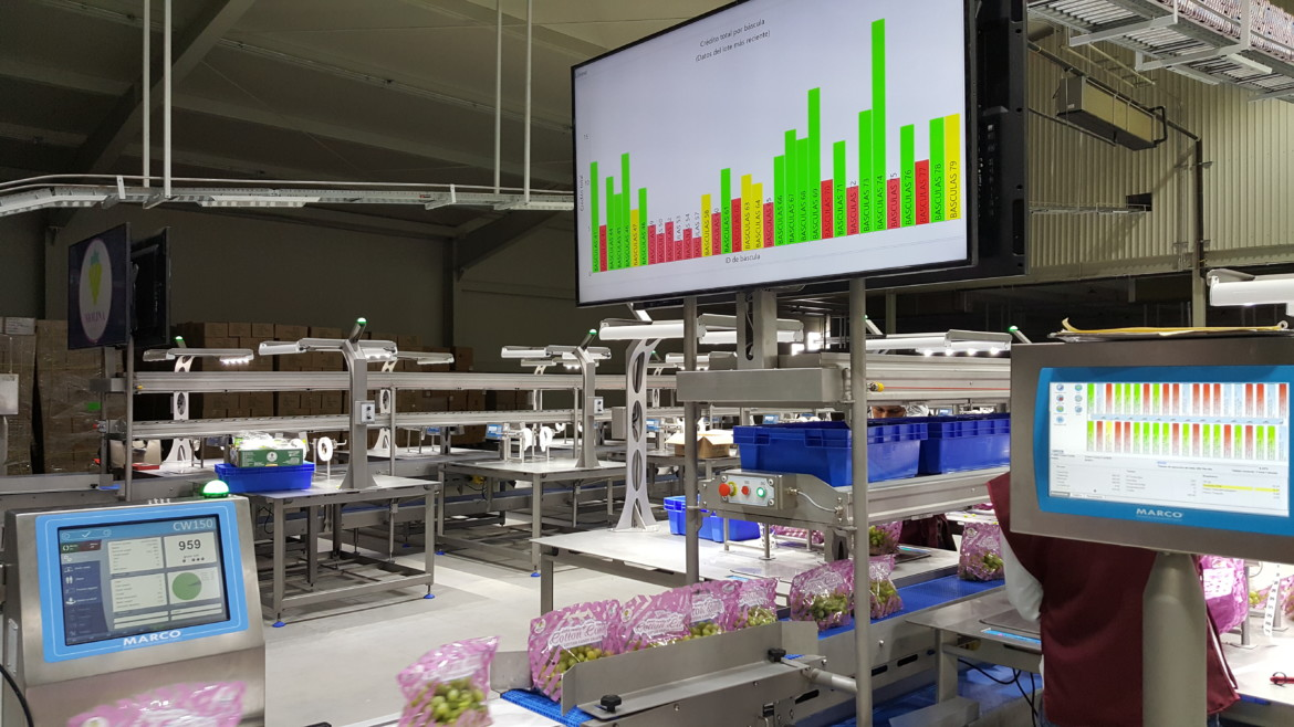 Production Data Display packing weight analytics screen