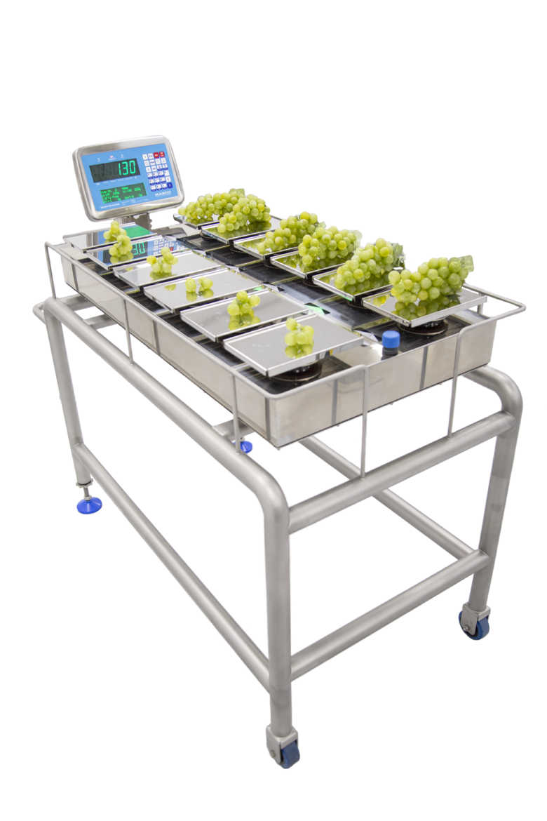 grape combination weighing scales