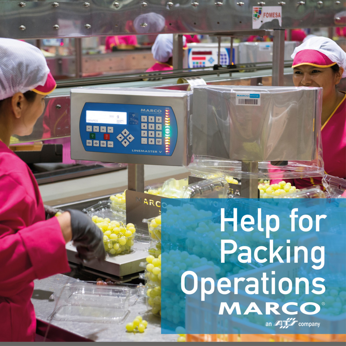 Help for Packing Operations during COVID19 harvest